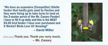 the mr canary company convenient bird feeding finally