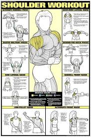 Bench Press Workout Routine Chart Free Workout Routines To Build Muscle