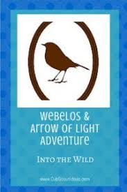 arrow of light scouting adventure cool activities for the webelos and arrow of light cub scout