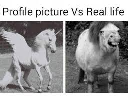 Funny Life Memes - 25 best memes about profile pictures vs real life profile