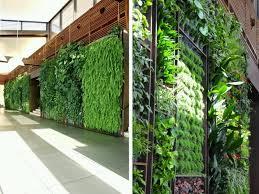 402 best green roofs u0026 vertical gardens images on pinterest
