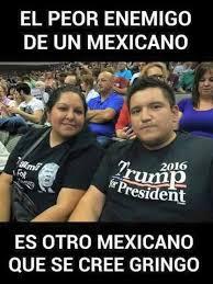 Latino Memes - latinos are using this anti donald trump facebook page to vent