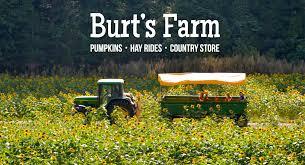 Pumpkin Picking Places In South Jersey by Burt U0027s Farm