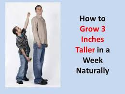how to grow taller in a week how to grow 3 inches taller in a week naturally guaranteed