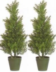 2 outdoor 2 artificial cedar topiary trees potted uv