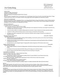 Different Types Of Resume Formats Cfa Resume Sample Free Resume Example And Writing Download