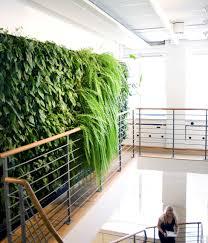 innovative greenery interior design concept home improvement