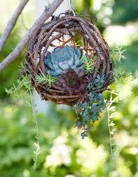 succulent planters for sale hanging grapevine bird u0027s nest succulent planter crafts for sale
