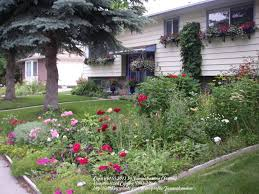 Hops On Trellis Adding Height To A Trellis For Hops Garden Org