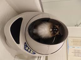 litter robot iii open air review no more scooping buy it here