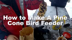 fun crafts with kids how to make a pine cone bird feeder youtube