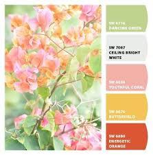 277 best color scheme coral and blue images on pinterest color