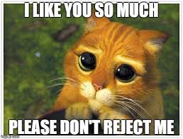 Rejected Meme - 20 i like you memes that will make her blush sayingimages com