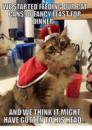 Fancy Feast Meme - we started feeding our cat cans of fancy feast for dinner and we