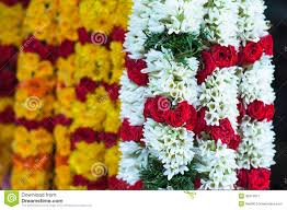 Indian Wedding Flowers Garlands Focus On White Garland With Red Rose Little India Royalty Free