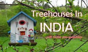 7 tree houses in india which will make you speachless