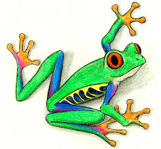 free frog pictures free clip free clip