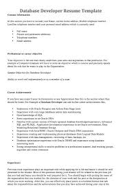 Developer Resume Sample by Wondrous Design Database Developer Resume 11 Pl Sql Resume Sample
