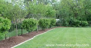 Backyard Fruit Trees Garden Design Garden Design With Fenced Backyard With Landscape