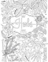 magic herbs coloring coloring book shadows