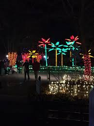Detroit Zoo Wild Lights The 10 Best Christmas Displays In Missouri