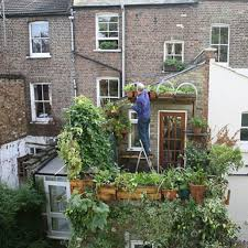 beautiful gardening in small places vegetable gardens in small