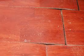 Best Underlayment For Laminate Flooring On Concrete Best Underlayment For Laminate Flooring On Concrete Innovative