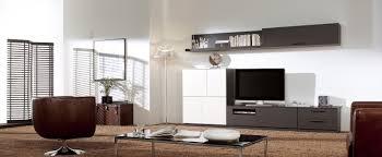 pleasant idea storage furniture for living room living room