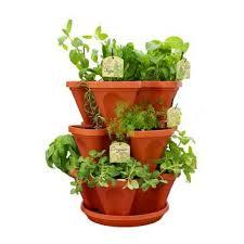 Indoor Herbal Garden Indoor Herb Garden Planter