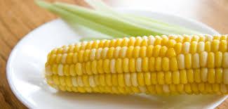 cuisiner des epis de mais épis de maïs frais recettes veggies and fruit