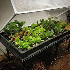 raised garden bed kits elevated and portable wicking bed
