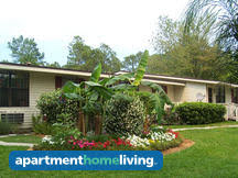 Cheap 1 Bedroom Apartments In Jacksonville Fl Cheap 1 Bedroom Jacksonville Apartments For Rent From 300
