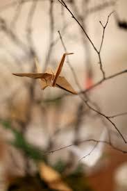104 best origami bird images on pinterest origami birds origami