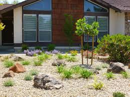landscape landscaping front lawn ideas low maintenance throughout