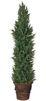 topiary trees topiary forms live artificial indoor outdoor