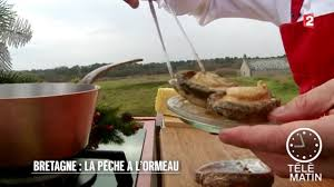 cuisiner les ormeaux comment cuisiner des ormeaux frdesigner co