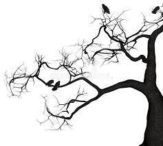 tree stock illustration illustration of flock morning