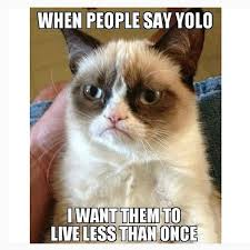 Grumpy Meme - 33 hilariously grumpy memes for all the occasional grumps out there