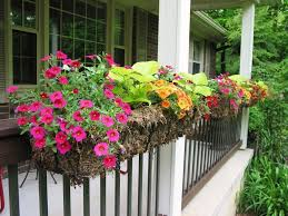 how to make a deck rail planter types of gardens and garden ideas