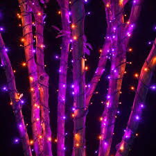 5mm led lights on black wire orange purple multi