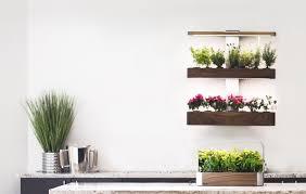 Indoor Garden Design by Indoor Garden Wall Gardening Ideas