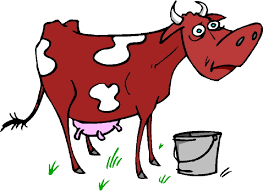 red and white cow clipart clipartxtras