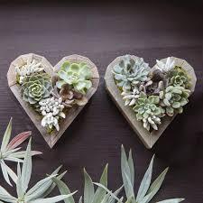 planter for succulents succulent heart planter kit 49 00 succulent gardens