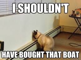 Cat Buy A Boat Meme - i shouldn t have bought that boat regretful cat quickmeme