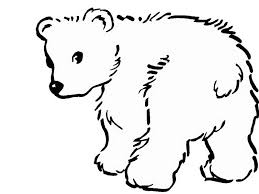 cute baby polar coloring pages coloring