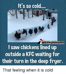 It S So Cold Meme - it s so cold wwwfacebookcomdailyjokes217 l saw chickens lined up