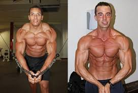 decline bench press muscles building 101