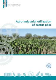 agro industrial utilization of cactus pear pdf download available