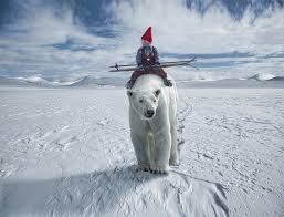 the christmas wish book anja polar gallery wrap the christmas wish