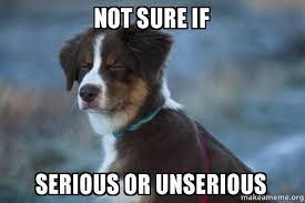 Not Sure If Serious Meme - not sure if serious or unserious unsure dog make a meme